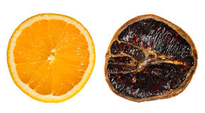 Juicy and dried orange slices side by side Stock Photo