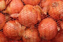 Juicy, flavorful onions that will be used for a cake or compote or salad. Winter season or summer or autumn you want vitamins royalty free stock photos