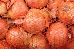 Juicy, flavorful onions that will be used for a cake or compote or salad. Winter season or summer or autumn you want vitamins stock image
