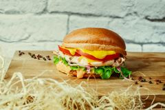 Juicy fragrant burgers with a beef for my beloved nephews. Juicy fragrant burgers with a turkey for my beloved nephews excellent option for a children`s holiday stock photos