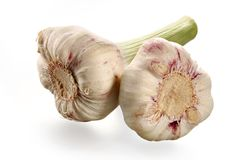 Juicy fragrant garlic Stock Image