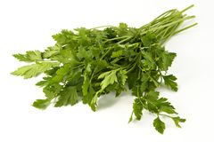 Juicy fragrant parsley Royalty Free Stock Photo