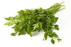 Juicy fragrant parsley. Irreplaceable seasoning for preparation of meal in east style and taste Royalty Free Stock Photo