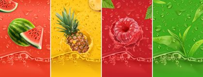 Juicy and fresh fruit. Watermelon, pineapple, raspberry, tea. Dew drops and splash. 3d vector realistic set. High quality 50mb eps vector illustration