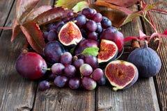 Juicy fresh fruits on dark wooden background Stock Image