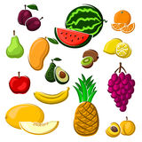 Juicy fresh fruits set in cartoon style Royalty Free Stock Photos