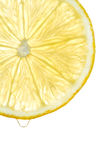 Juicy fresh lemon slice Royalty Free Stock Photo