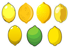 Juicy fresh lemons and lime fruits Stock Photos