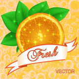 Juicy fresh orange background with leaves and ribbon.Vector. Juicy fresh orange, background with leaves and ribbon.Vector vector illustration