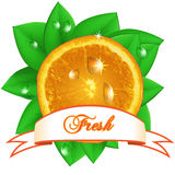 Juicy fresh orange with leaves, drops  and ribbon on white backg Stock Photography