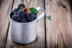 Juicy fresh organic blackberries in old mug. On a wooden background Royalty Free Stock Photography