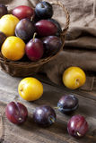 Juicy fresh plums on dark wooden background. Some plums in a basket on  wooden surface Stock Images