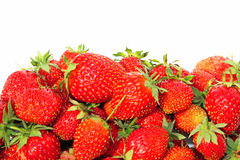Juicy fresh strawberries isolated Royalty Free Stock Photo