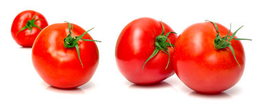Juicy fresh tomatoes Stock Images