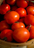Juicy, fresh tomatoes for sale. Stock Photos