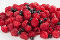 Juicy fresh wet raspberries and blueberries on white. Plate Royalty Free Stock Photo