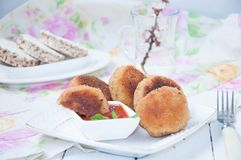 Juicy fried meat cutlets Stock Image