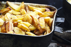 Juicy fried potatoes Royalty Free Stock Photos