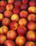 Juicy Fruit. Ripe Nectarines at a Market Stock Photo