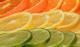Juicy fruit background from various slices of citrus Royalty Free Stock Photos
