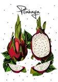 Juicy fruit Pitahaya  isolated on white. Royalty Free Stock Photography