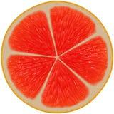Juicy fruit slice Royalty Free Stock Photos