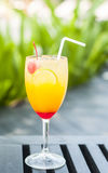 Juicy fruits punch Royalty Free Stock Photo