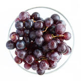 Juicy, full-bodied grapes in a wine glass Stock Photos