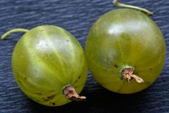 Juicy Gooseberry Stock Photo
