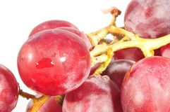 Juicy grape Royalty Free Stock Images