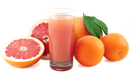 Juicy grapefruit , oranges and juice glass. royalty free stock photo