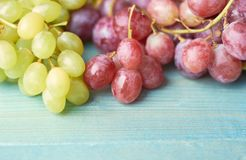 Juicy grapes on a blue background royalty free stock images