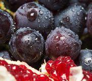 Juicy grapes with red pomegranate Royalty Free Stock Photos