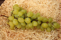 Juicy grapes. Served on a wooden platter Royalty Free Stock Images