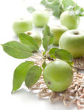 Juicy Green Apples Royalty Free Stock Images