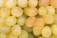 Juicy green grapes close-up Stock Photos