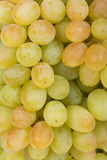 Juicy green grapes close-up Royalty Free Stock Images