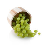 Juicy green grapes Stock Photography