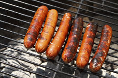 Juicy Grilled Hot Dogs on a Charcoal Grill. Six juicy grilled hot dogs on an outdoors charcoal grill on a sunny day Stock Photos
