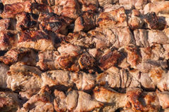 Juicy grilled meat Stock Image