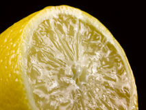 Juicy halved lemon Royalty Free Stock Images