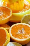 Juicy halved oranges as closeup Stock Images