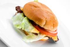 Juicy hamburger. A juicy hamburger on a white plate royalty free stock photo