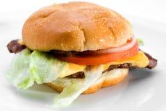 Juicy hamburger stock images