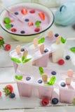Juicy ice cream with fruity yogurt Stock Photography