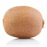 Juicy kiwi fruit Stock Images