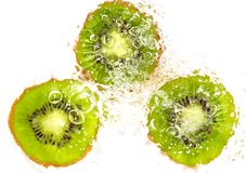 Juicy kiwi fruit in water on a white background. macro Royalty Free Stock Photos