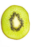 Juicy kiwi fruit Stock Image