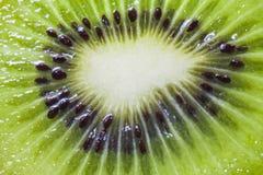 Juicy kiwi fruit Stock Photos