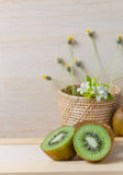 Juicy kiwi fruits still life Stock Photos